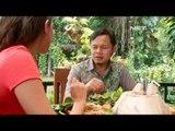 NET12 - Lunch with Bima Arya, Walikota Bogor