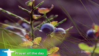 Good Morning Prayer _ O Lord, Grant Me..._ Morning Prayer Catholic _ Eternal Grace-pxyj2vk3qkA