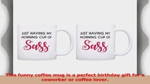 Funny Coffee Mugs Just Having My Morning Cup of Sass Coworker 2 Pack Gift Coffee Mugs Tea 36b0314d