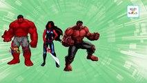 Hulk Cartoon Finger Family Songs   RED HULK Cartoon Animation Nursery Rhymes Collection for Children