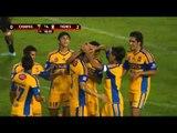 Liga MX: Jaguares vs Tigres / Jornada 1