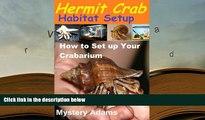 Best PDF  Hermit Crab Habitat Setup  Hermit Crab care and Habitat Set-up [Download] Online