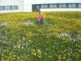 Sarah petite maison dans la prairie