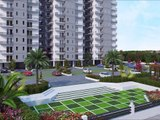 The Roselia Gurgaon