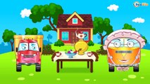 Dessin Animé Voiture - Camion pour bébés et Pelleteuse - Vidéo Éducative de Voitures Partie 2