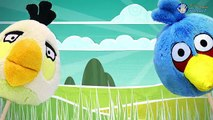 ANGRY BIRDS Finger Family Song w/ Red, Chuck, Terence, Matilda | Angry Birds Movie Toy Rhymes