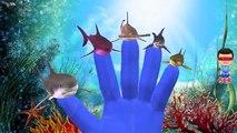 акула потешки ,  Акула Дети Nursery Rhymes ,  Акула ,  Динозавры Мультфильмы Для маленьких детей