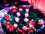Mcfly on saturday night takeaway - dancing as elfs