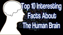 PDF 158 Interesting and The Most Amazing Facts About Health and