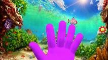 Sea Animals Finger Family Sharks Dolphin And Crocodile Cartoons Finger Family Nursery Rhymes