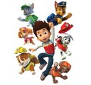 Paw Patrol Pups Save a Pizza - Paw Patrol Full Episodes English - Animation Movies for Kids