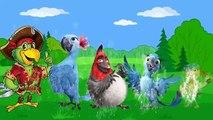 Parrot Finger Family Nursery Rhymes | Top Viewed Funny Kids Songs | Funny Rhymes |