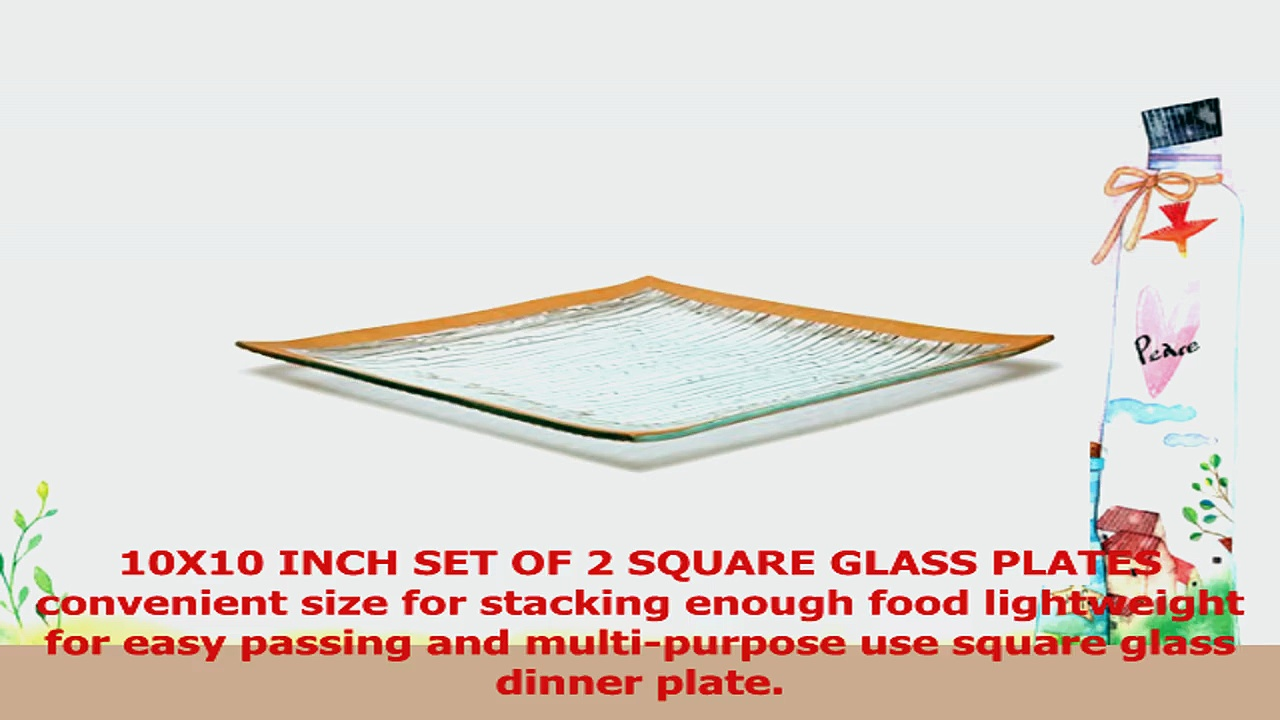 GAC Set of 2 Elegant Tempered Glass Dinner Plates Square Glass Platter 10 Inch Break and e39e3f20