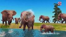 Amazing Animal Fight Videos | Elephant Vs Crocodile Animal Attacks | Animal Cartoons for Children