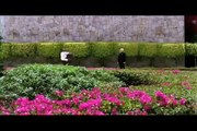 Ladrones a Domicilio Trailer