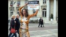 Nue pour dénoncer la présence d'animaux dans les cirques