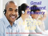 Easy to talk to Gmail Password Recovery Number @1-877-729-6626 Gmail Password Recovery