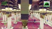 Owais Raza Qadri Naats  - New Naats - HD Naat - Owais Raza Qadri - Qadri Naats - HD Naats -