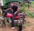 sacaneando-o-macaco