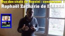 Duo des chats de Rossini, consternant ! Raphaël Zacharie de IZARRA