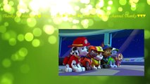 Paw Patrol full episodes english 2017 ♥ Pups Save a Ghost ♥ Pups Save a Show
