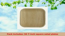 Table To Go 50Piece Palm Leaf Square Salad Plates 7Inch 014a4411