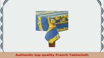 Citrons Bleu Striped Rectangular French Tablecloth Coated Cotton 61 x 79 46 people 1b9d98f2