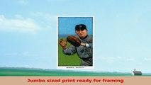 Brooklyn Dodgers  Bill Bergen  Baseball Card 36x54 Giclee Gallery Print Wall Decor 0629c30f