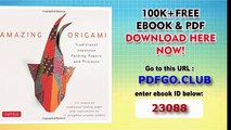 Traditional Japanese Folding Papers and Projects [144 Origami Papers with Book, 17 Projects]