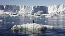 Record Lows Measured For Antarctic Sea Ice