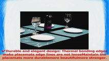 Mint Cook Placemat Washable Table Place Mats for Dining Table or KitchenWoven Vinyl Heat e2a1d463