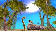 Lion Vs Great Python Fighting | Lion Attacking Great Python Cartoon Real Fight Video