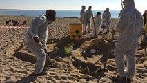 Manif contre l'enfouissement des déchets nucléaires à Bure (Meuse)