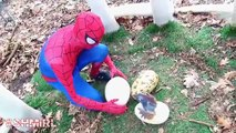 SPIDERMAN & HULK Dinosaur FART PRANK fun Dinosaurs T-Rex BABY - Superhero Fun in Real Life