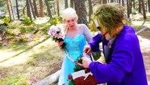 Spiderman & Pink Spidergirl vs T-Rex! Ft Frozen Elsa in Real Life - Fun Superhero w/ Comic