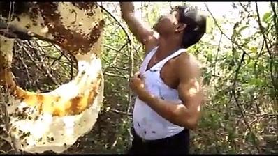 brave man doing amazing stant  honey bee. Honey bee kept in inner wear