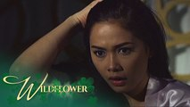 Wildflower: Ivy dreams about her parents | EP 6