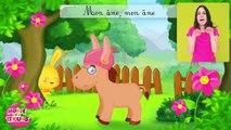 La comptine du cheval - chansons à gestes pour les enfants - Titounis-mpDacCs6A-0