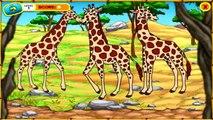 Go Diego Go Full Game - Go Diego Go Safari Rescue! Go Diego Go Full Game -