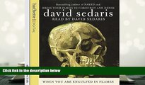 PDF  When You Are Engulfed in Flames David Sedaris  BOOK ONLINE