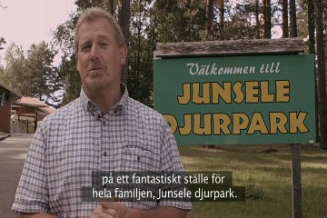 Junsele Djurpark