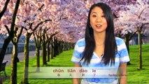 Learn Spring, Spring Break, Spring Festival Chinese New Year, Spring Rolls in Mandarin Chinese!