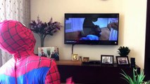 #GRITO vs SPIDERMAN w/ IRONMAN resulta TROLLER Gritos por el Superhéroe de los Niños de la Realidad TV