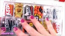 CHOCOLATE Candy BONANZA! Chocolate BAND-AIDS Giant Reeses & Kiss! Hershey Survivor BOX! F