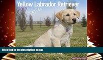 Download [PDF]  Lab Puppies Calendar - Yellow Labrador Retriever Puppies - Dog Breed Calendars -
