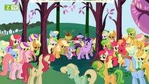 Pony Bé Nhỏ Tình Bạn Diệu Kỳ - Phần 1 - Tập 1 - Tình Bạn Là Phép Màu - Phần 1