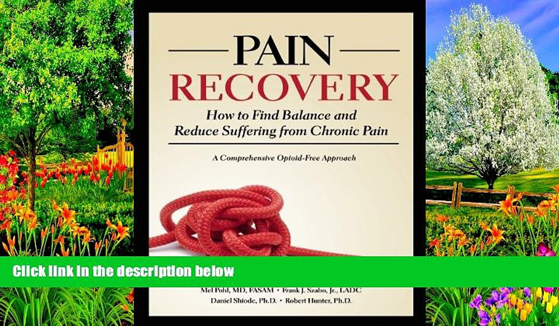BEST PDF  Pain Recovery: How to Find Balance and Reduce Suffering from Chronic Pain Mel Pohl For