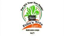 Tree Removal Cashiers NC | Cashiers NC Tree Removal | Cashiers NC Tree Trimming Services