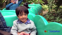 Amusement Parks for Kids Family Fun Outdoor Theme Park Disney World Roller Coasters Splash