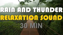 The relaxing sound of heavy rain and thunder - video dailymotion